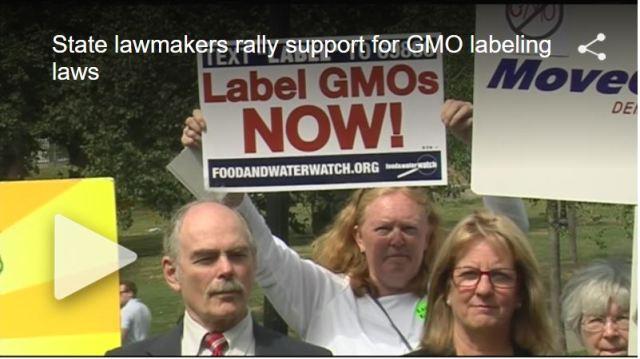 GMOlabelrallyvideo